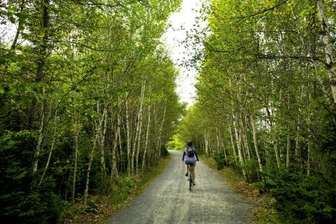 Halifax Bike Trails - Discover Halifax